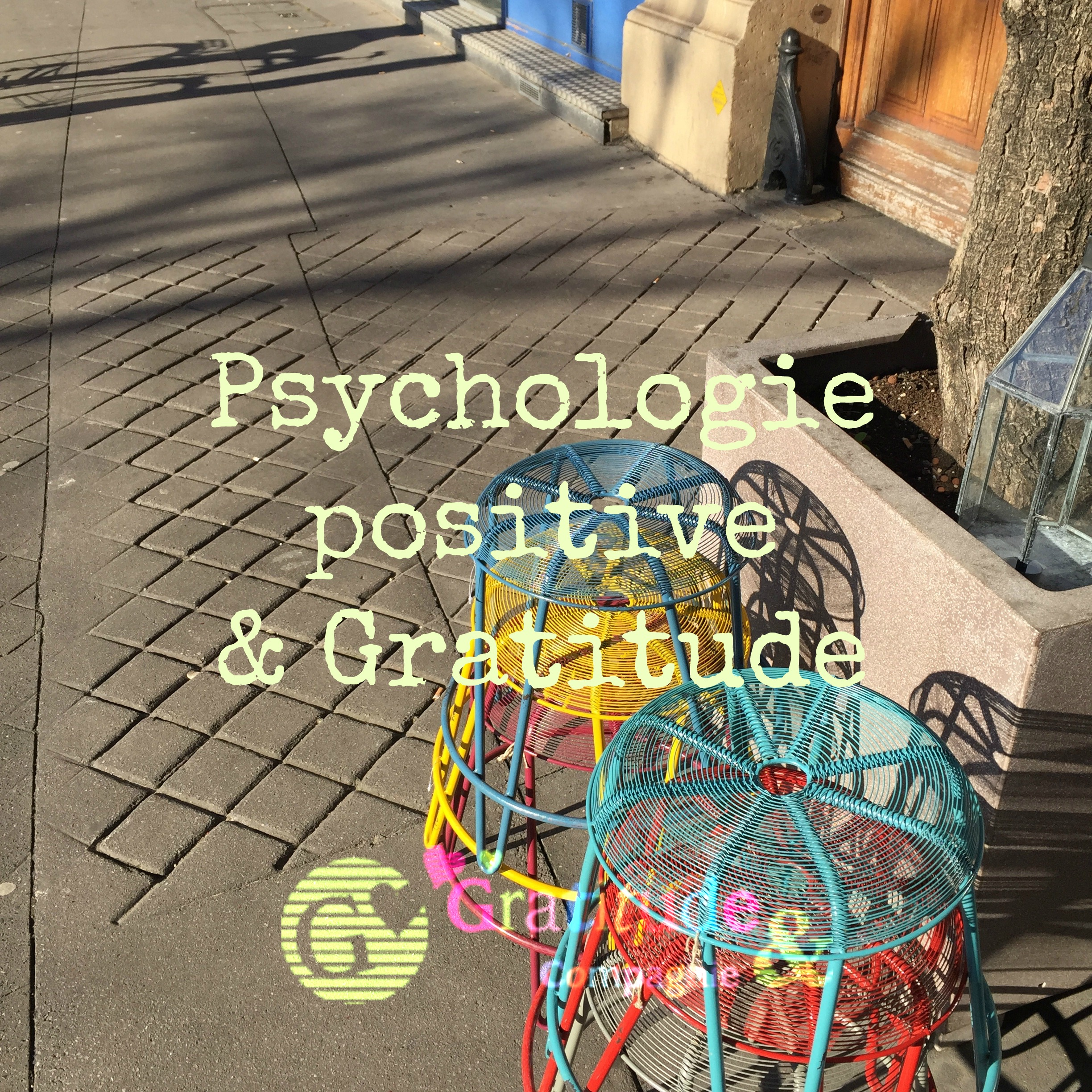 Psychologie positive et gratitude